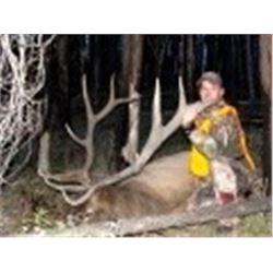 Trophy Elk, Deer, Black Bear and Wolf Horseback Hunt Bob Marshall Wilderness Montana