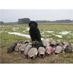 LA 32 - CHESAPEAKE BAY YOUTH DUCK & GOOSE HUNT FOR FOUR