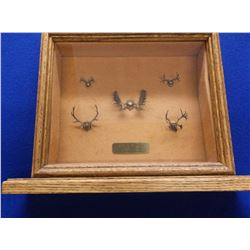 """Marked Antlers of North America Shadow Box- Cast in Bronze- Ralph Trethewey- 14""""W X 10.5""""H X 4""""D"""
