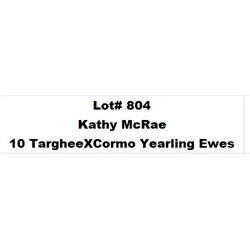 Lot 804 - Kathy McRae  - 10 head of Targhee X Cormo Yearling Ewes