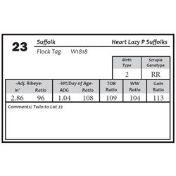 Lot 23 - Suffolk