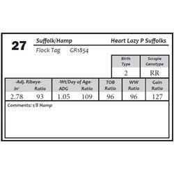 Lot 27 - Suffolk/Hamp