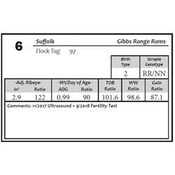 Lot 6 - Suffolk