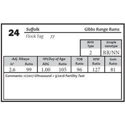 Lot 24 - Suffolk