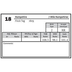 Lot 18 - Hampshire