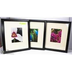 SET OF 3 PROFESSIONAL PHOTOGRAPHY FLOWER PRINTS