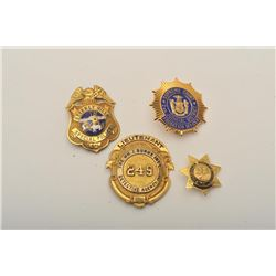 18DC-125I BADGES