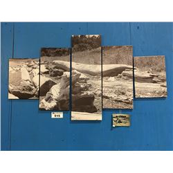 """5 PANEL ART PRINT ON CANVAS """"DRIFTWOOD"""" WALL HANGING  APPROX 56""""X30"""""""