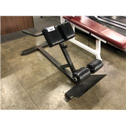 BLACK ADJUSTABLE BACK EXTENSION BENCH