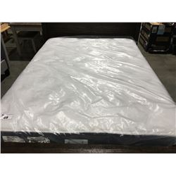 QUEEN SIZED MARKET SPECIAL PLUSH MATTRESS & BOX SPRING SET