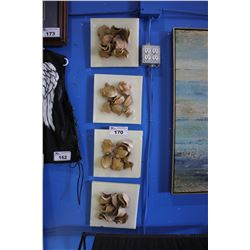 SET OF FOUR DRIED FRUIT WALL PLAQUES