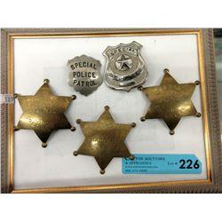 5 Assorted Metal Badges