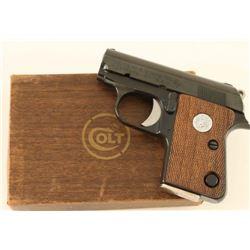 Colt Junior .25 ACP SN: 0D36547