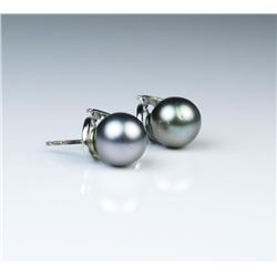 Lovely Pair of South Sea Black Pearl Earrings