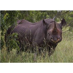 ZULU NYALA GAME RESERVE - SOUTH AFRICA | Black Rhino Vita Dart Safari for 2 people for a 2-night sta