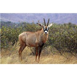 MATWETWE SAFARIS | Seven Day Roan Safari