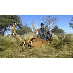 TWO HUNTERS AND TWO NON-HUNTERS RED STAG AND BLACKBUCK, INCLUDES TROPHY FEES - La Pampa Argentina