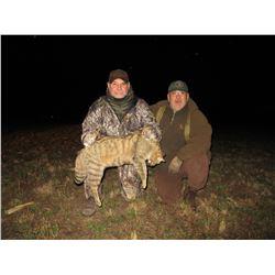 Small Predators Hunt- Serbia