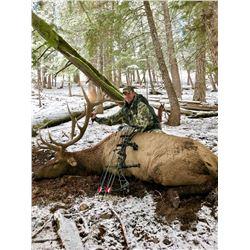 Idaho Archery Elk Hunt