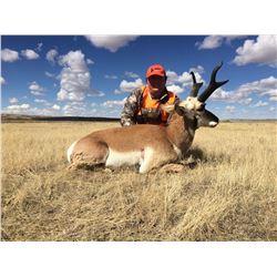 2019 Colorado Safari- Elk,Mule Deer & Pronghorn