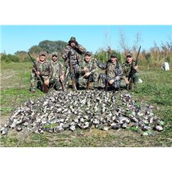 5 Day/4 Night High-Volume Dove Shoot for 4-6 Hunters with L& S Hunting in Santiago del Estero, Argen