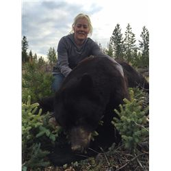 5 Day Black Bear Hunt for 1 Lady Hunter with Big Country Outfitters in Wyoming
