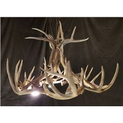 "Whitetail deer antler chandelier 34"" x 20"" high"