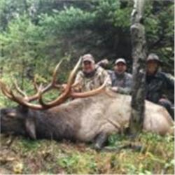 British Columbia Archery Elk hunt with Rocky Mountain High Outfitters