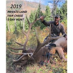 Montana Archery Elk Hunt on Private Land with Lone Wolf Guide Service