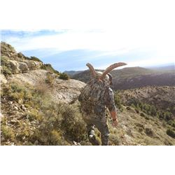 Spain Beceite Ibex Hunt- Trophies and Days included