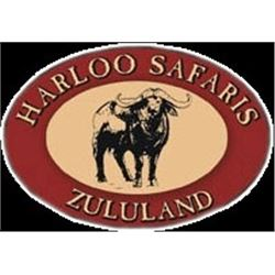 Harloo Safaris: South Africa Plains Game Safari