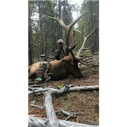 Elk/Mule Deer Drop Camp Pack in hunt for 2 in Colorado