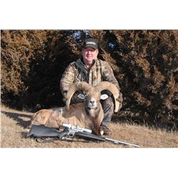 Bighorn Cross Sheep hunt for 1 youth in Nebraska