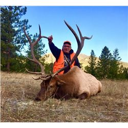5 Day Elk Hunt in Colorado