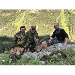 Mid-Caucasian Tur Hunt in Russia for 1 hunter