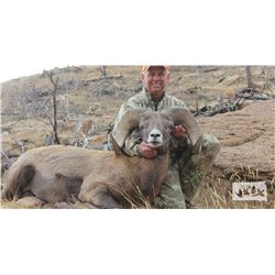 2019 SOUTH DAKOTA BIGHORN SHEEP TAG
