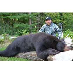 5 Day Black Bear Hunt for 3 hunters in Ontario
