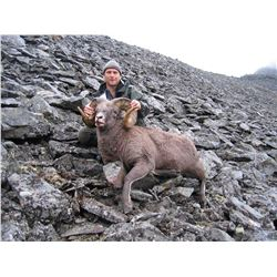 Russian Snow Sheep hunt in Kamchatka or Chukotka