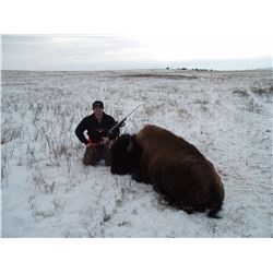 South Dakota Buffalo Hunt