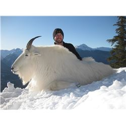 10-Day 1on1 Guided Mountain Goat/Canadian Moose Hunt