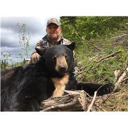 5-day Black Bear Hunt in British Columbia for 1 hunter
