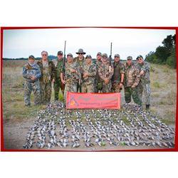 High Volume Dove Hunt in Argentina.