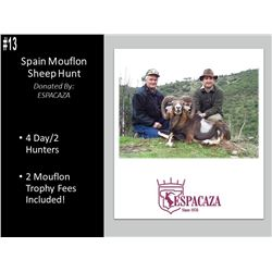 4 Day Mouflon Sheep Hunt For 2 Hunters In Spain.