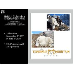 10 Day British Columbia Mountain Goat Hunt