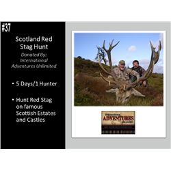 5 Day Scotland Red Stag Hunt For 1 Hunter