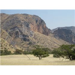 Namibian Safari Hunt