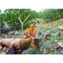 Colorado Trophy Elk Hunt