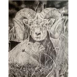 Ram Drawing – Ryan Straw
