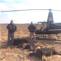 Air Wolfe Heli Hog Hunt