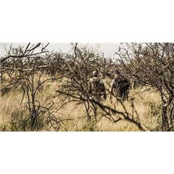 Catena Safaris Argentina  All Inclusive Hunting Package For 3 Hunters/ 5 Days With Trophy